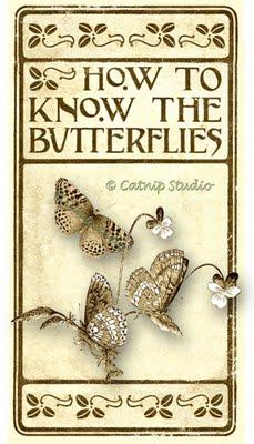 howtoknowbutterflies